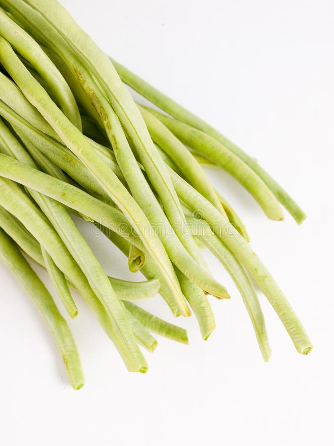 Chinese long beans in vertical composition. And isolated on white background stock photos