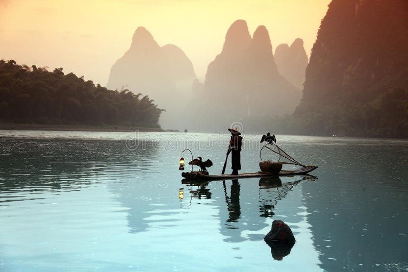 Chinese man fishing with cormorants birds in royalty free stock image