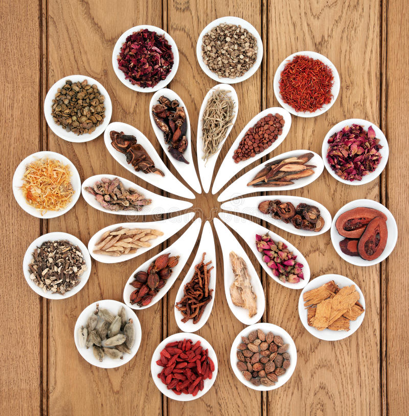 Chinese Medicine Sampler. Large chinese herbal medicine selection in white porcelain dishes over oak background stock photography