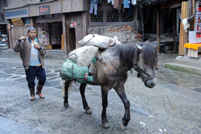 Chinese Miao nationality farmer. A Chinese Miao farmer walks with his horse in Miao Village ( or Villages of Thousands of Miao House-holds) in Xijiang,Kaili royalty free stock photography