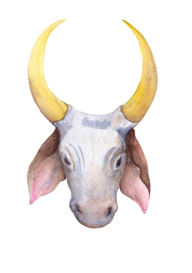 Bull Head Artwork Illustration On The White Background ...