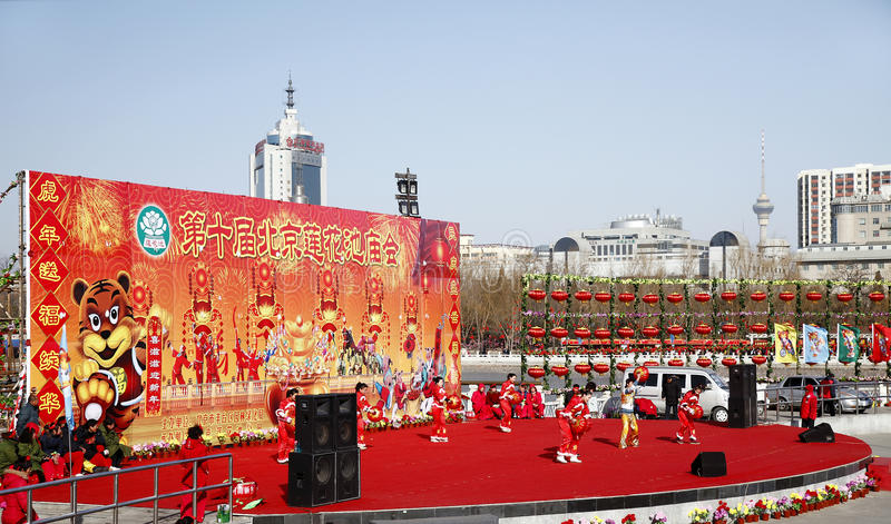 Chinese new year celebration 2010 stock image