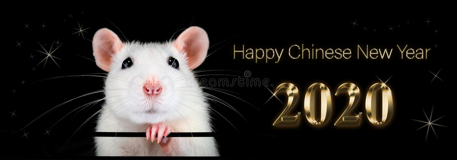 Chinese new year 2020. Year of the rat. Fortune. royalty free stock photo