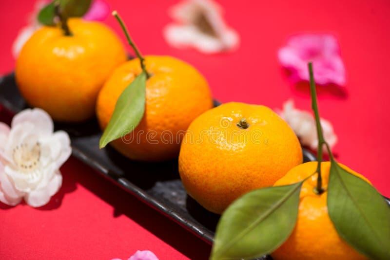 Chinese nieuwe jaar` s decoratie Mandarijntje op rode achtergrond royalty-vrije stock afbeeldingen