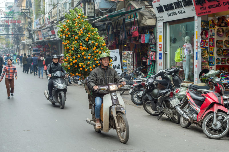 Chinese Nieuwjaardecoratie in Vietnam royalty-vrije stock foto's