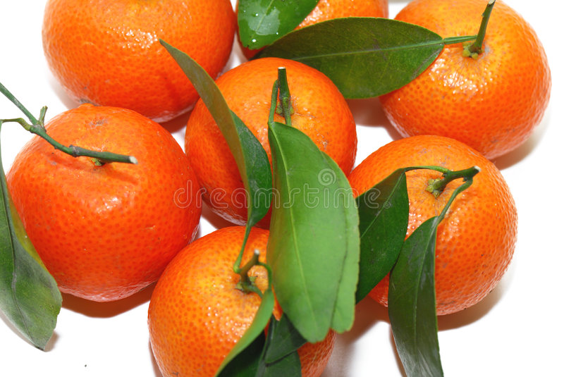 Chinese Orange royalty free stock image