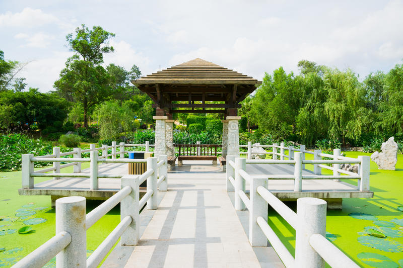 Chinese pavilion. Above the lotus pond stock photography