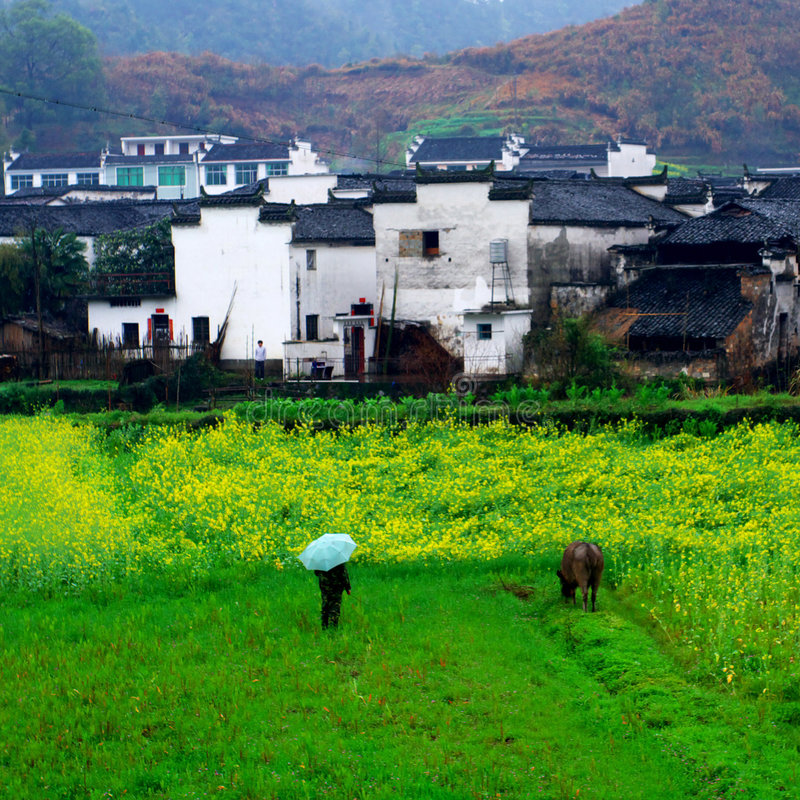 Free Chinese Scenery Royalty Free Stock Photography - 8785347