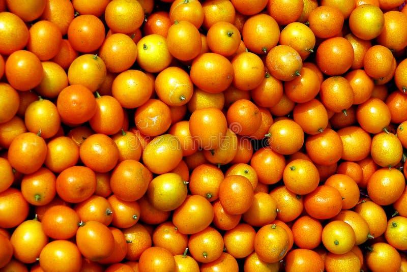 Chinese small cumquat. Some orange cumquat in Chengdu,west of china stock photo