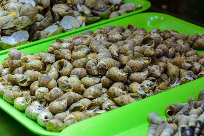 Chinese street food. Street trading. Chinese kinds of fresh seafood at an asian seafood market in Sanya, Hainan province, China. Sanya, Hainan/China - January 7 stock images