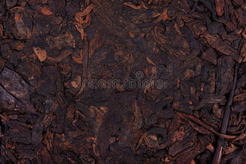 Chinese tea Shou Puer. Pressed fermented Pu-erh tea. Macro close up. Aromatic black puer tea. Healthy drink. Texture. royalty free stock images
