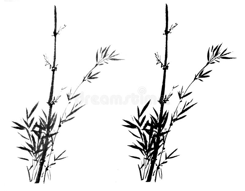 Chinese traditional distinguished gorgeous decorative hand- bamboo sketch vector illustration