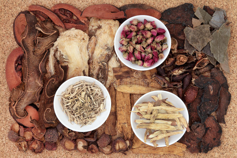 Traditional Chinese Medicine. Chinese traditional herbal medicine selection over cork background stock photos