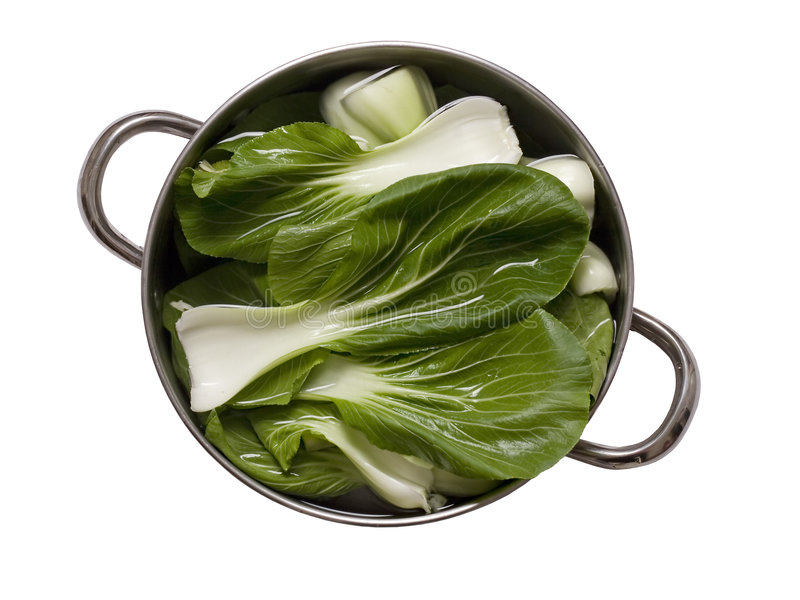 Chinese Vegetable Bok Choy royalty free stock images