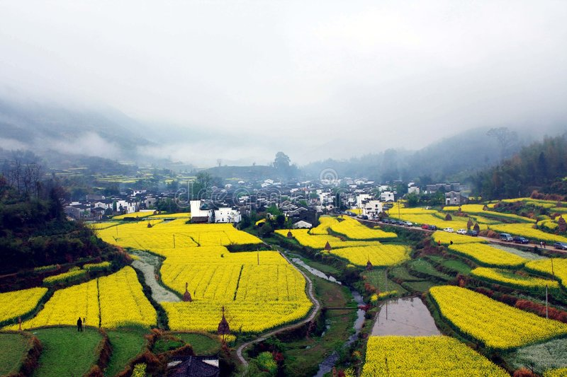 Download Chinese village stock photo. Image of color, image, spring - 6212144