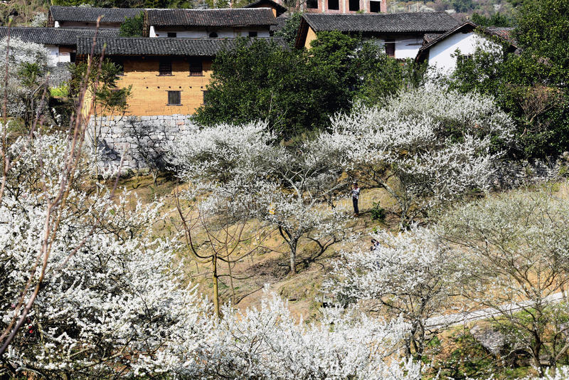 Chinese village stock photos