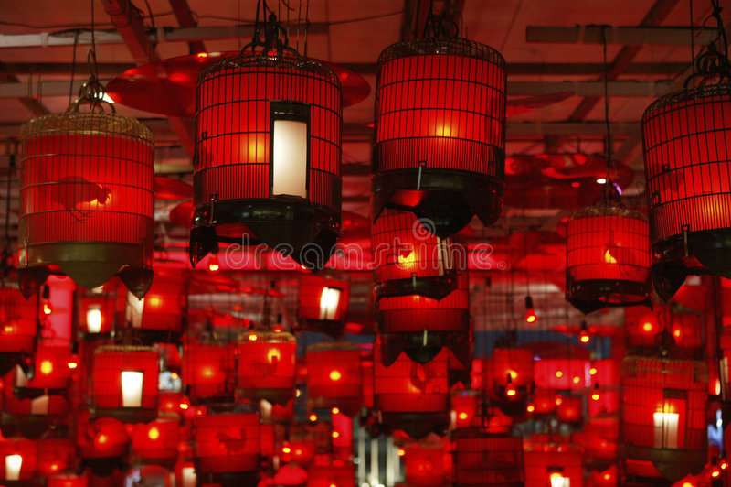Chinese vogelkooi royalty-vrije stock foto's