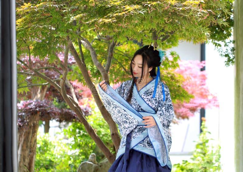Chinese vrouw in traditionele Blauwe en witte Hanfu-kledingstribune onder de esdoornboom stock foto's
