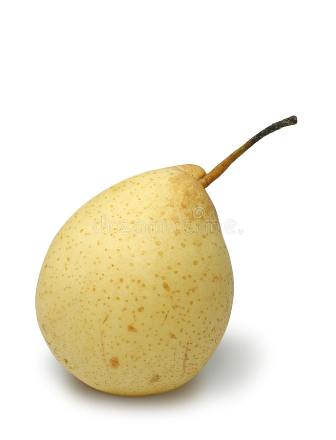 Chinese white pear stock image