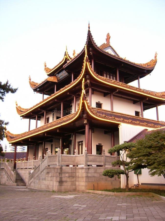 Chinese zolder door boom stock afbeelding