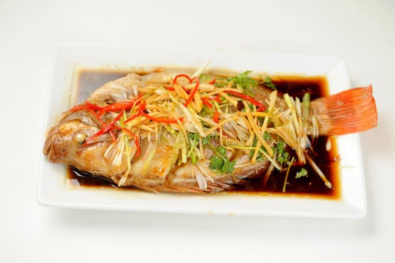 Chinesische Art marinierte gedämpfte Fische lizenzfreie stockbilder