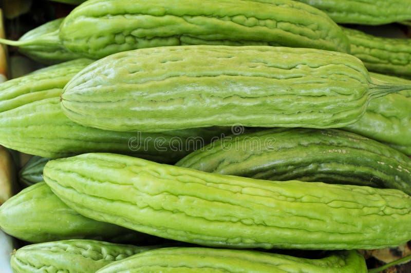 Chinesische bittere Melone lizenzfreie stockbilder