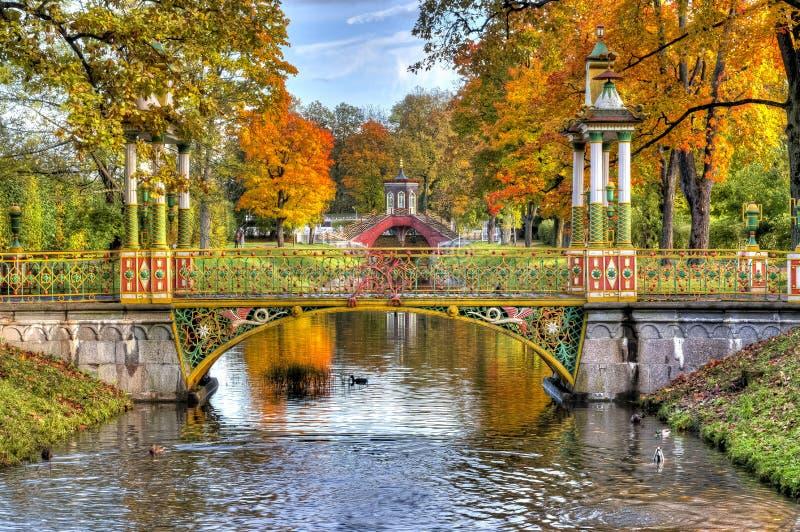 Chinesische Brücke während des ausgereiften Herbstes des goldenen Falles in Alexander-Park, Pushkin, St Petersburg, Russland lizenzfreies stockfoto