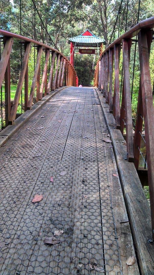 Chinesische Brücke Wandiliglong stockfoto