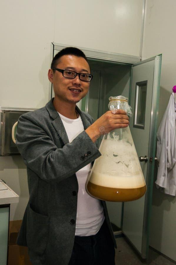 Chinesische Handwerksbierbrauerei lizenzfreie stockfotos