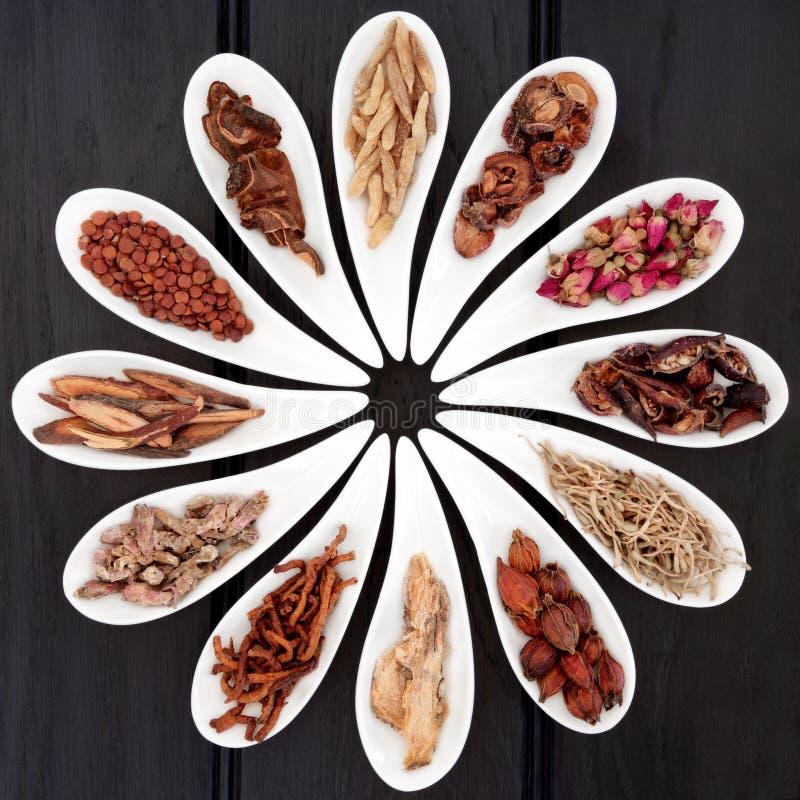 Chinesische heilende Kräuter stockbilder