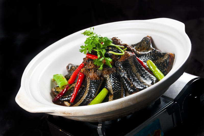 Chinesische Küche gebratener Aal lizenzfreie stockfotografie