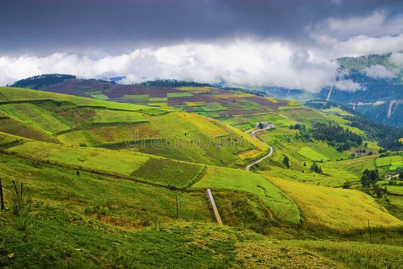 Chinesische landwirtschaftliche Landschaft lizenzfreies stockfoto