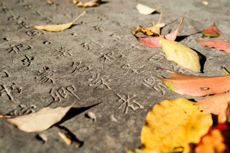 Chinesische Schriftzeichen geschnitzt in einem Stein lizenzfreie stockfotografie