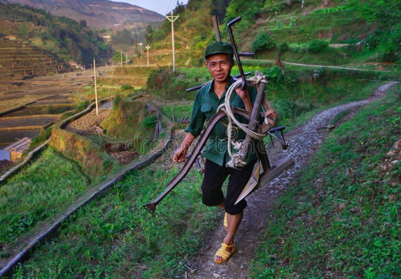 Chinesischer Bauer kultiviert Reisfeldhacke. Mann trägt Pflug das Reisfeld lizenzfreie stockfotos