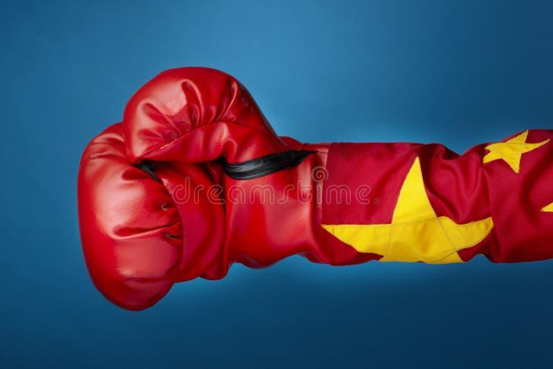 Chinesischer Boxer lizenzfreie stockbilder