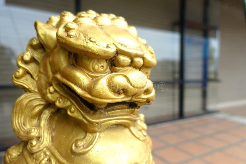 Chinesischer Goldlöwe lizenzfreie stockfotos