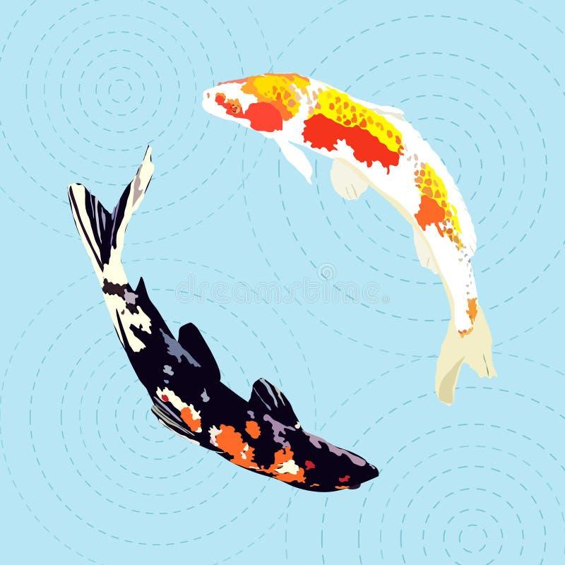 Chinesischer Karpfen, japanischer koi Fisch, Vektorillustration stock abbildung
