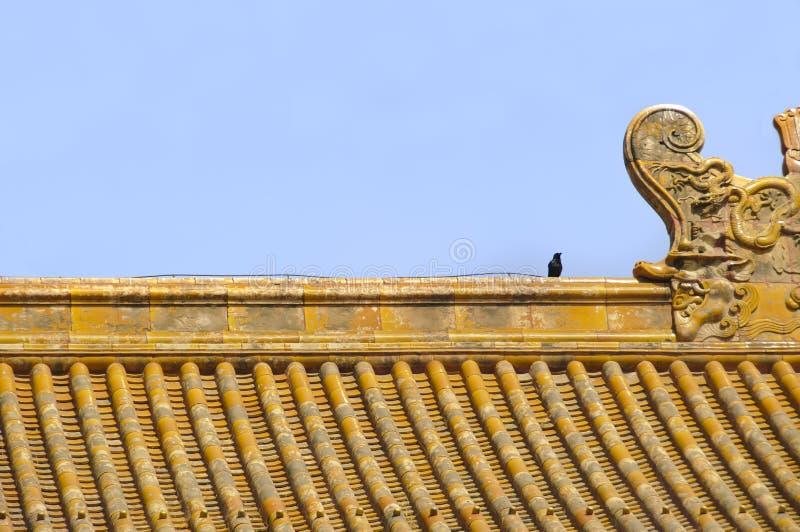Chinesisches mit Ziegeln gedecktes Dach innerhalb der Verbotenen Stadt, Peking lizenzfreie stockfotografie