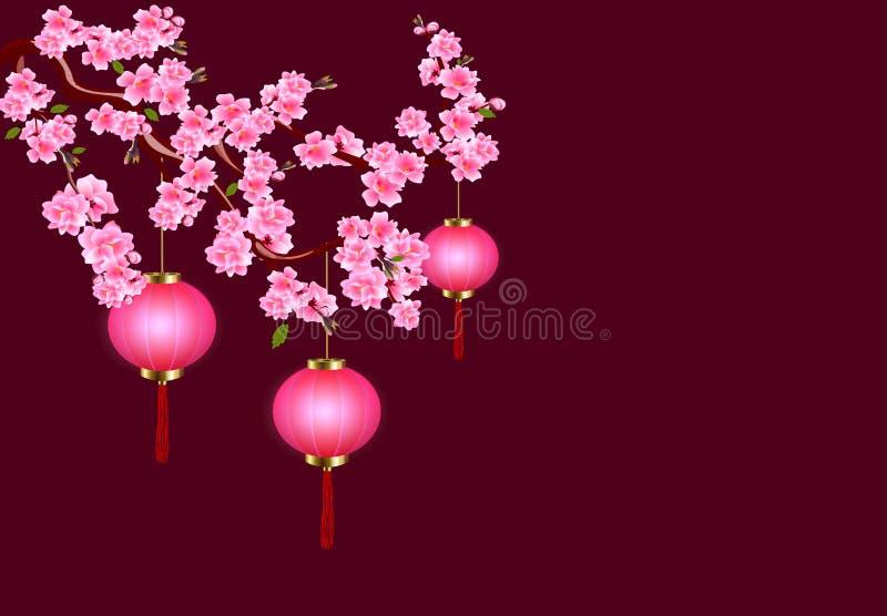 Chinesisches neues Jahr E Kirschblumen mit den Knospen und den Blättern auf der Niederlassung Dunkler Hintergrund lizenzfreie abbildung