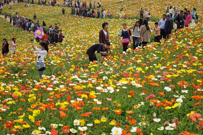 Chinesisches Volk Frühlingsausflug stockfoto