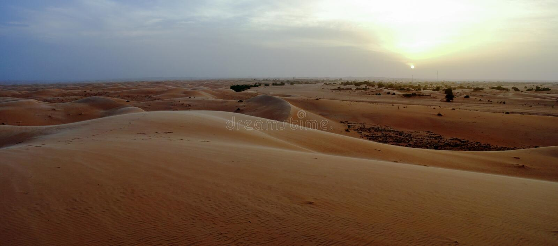 Chinguetti沙丘全景在日落的 库存图片
