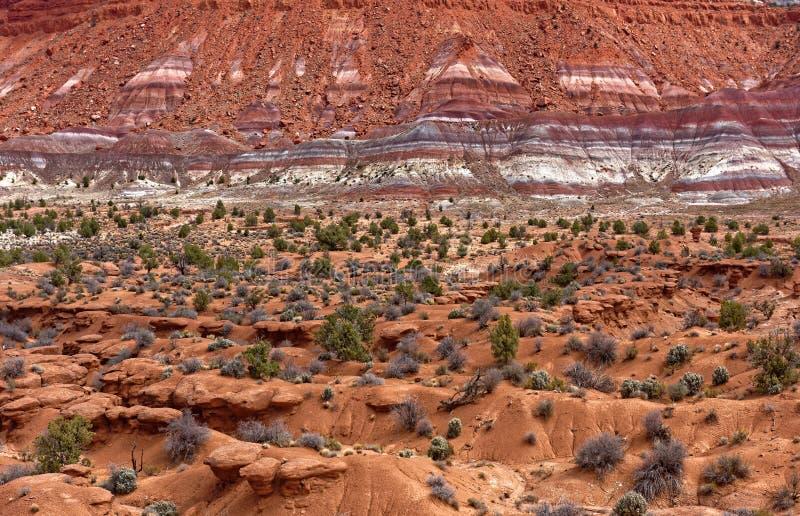 Chinle bildande nära Paria Utah fotografering för bildbyråer