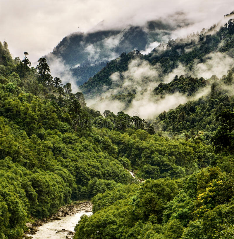 Chino escénico de Tíbet Medog foto de archivo