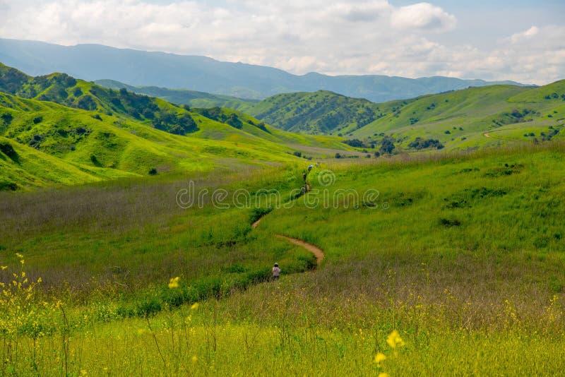 Chino Hills sikt i vårtid arkivfoto