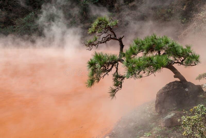 Chinoike-Jigoku Krwionośnego basenu piekło jest jeden osiem Beppu gorącej wiosny wycieczka turysyczna obraz stock