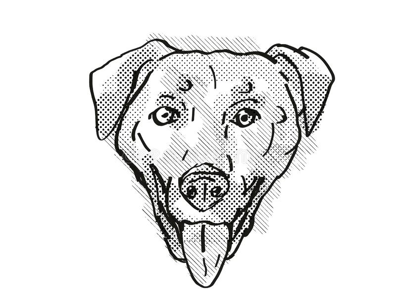 Chinook Dog Breed Cartoon Retro Drawing stock illustration