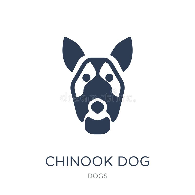 Chinook dog icon. Trendy flat vector Chinook dog icon on white b vector illustration