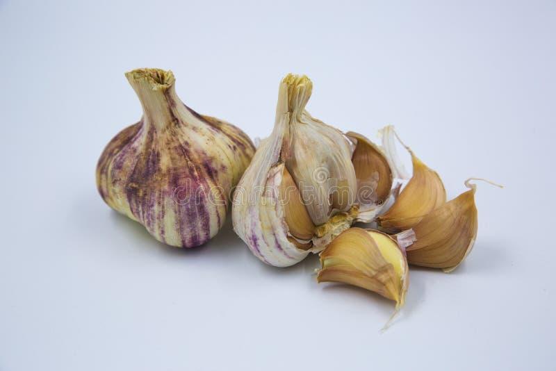 Chiodi di garofano di aglio porpora immagine stock libera da diritti