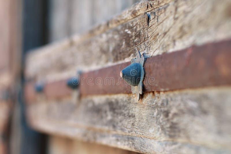 Chiodi di garofano di vecchia porta di legno immagini stock libere da diritti