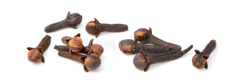 Chiodi di garofano secchi isolati su bianco fotografie stock